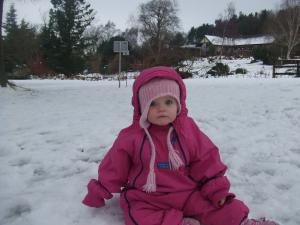Christmas 2008 020