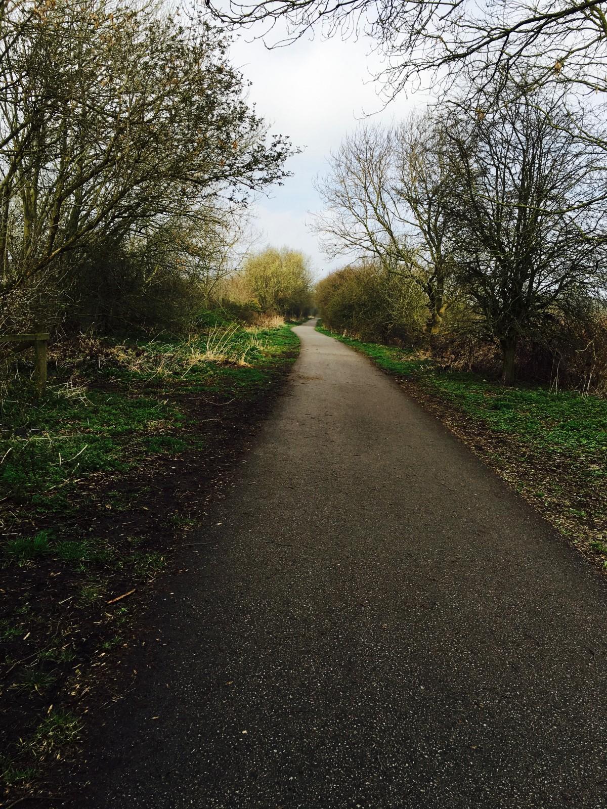 Harrogate Mama, Harrogate mums, Ripley Bike ride, Ripley, kids bike ride Harrogate, IMG_8643