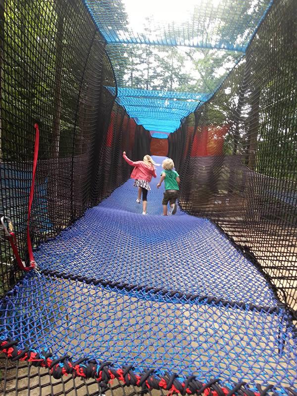treetop-nets-windermere.jpg