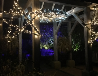 GLOW Illuminations come to RHS Harlow Carr Gardens