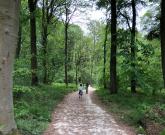 Swinsty Reservoir Walk with the Family – sponsored post